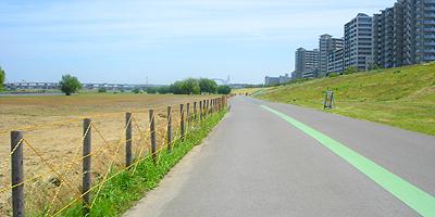 サイクリング,都内,おすすめ,サイクリングコース,東京,スポット,画像