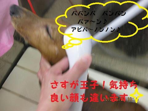 IMG_1153.JPG