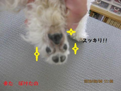IMG_1164.JPG