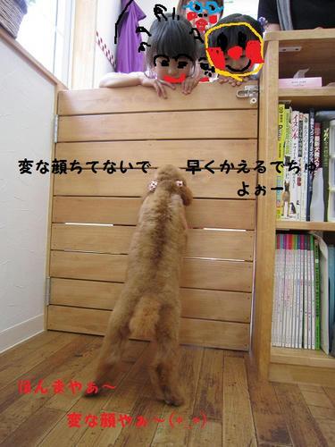 IMG_0759.JPG