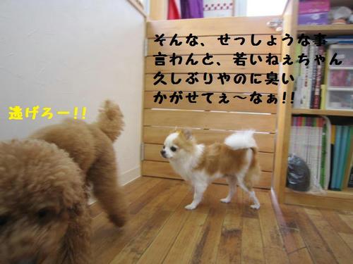 IMG_3164.JPG