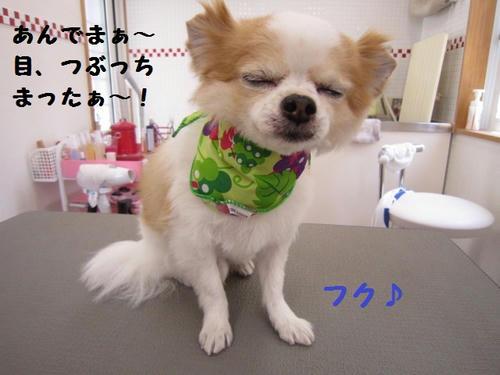 7d168361.JPG