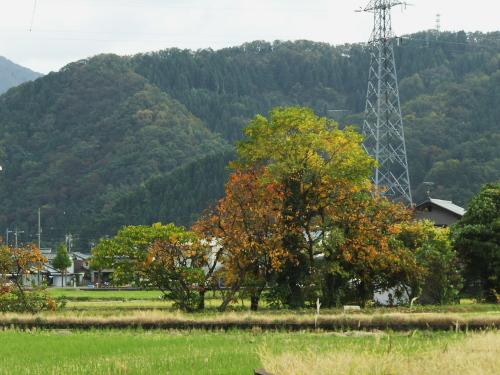DSCF4201.jpgk3.jpg