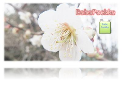 RehaPockke | リハポッケ コンテンツイメージ