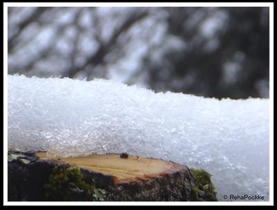 雪の写真画像イメージ | 冬の季節_1