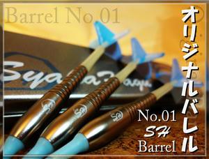 sh-bareru01-01.jpg