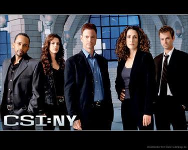 CSI-NY-tori.jpg