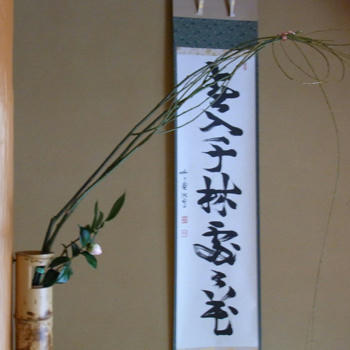 2011hatugama02.jpg