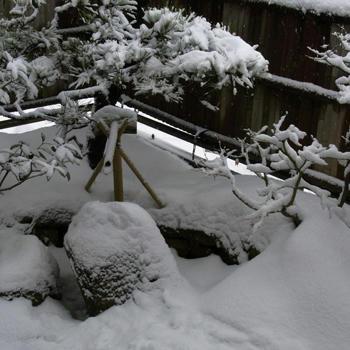 2011hatugama03.jpg