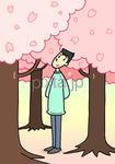 桜・桜の木・桜満開・桜の花びら・花見