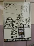 080528-roots-9.jpg