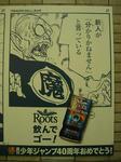 080528-roots-16.jpg