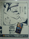 080528-roots-22.jpg