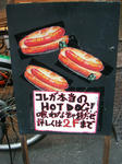081101-hotdog-2.jpg