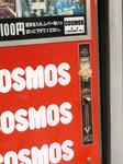 100401-cosmos-4.jpg