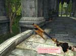 w_WareWolfs_Rifle_2.jpg