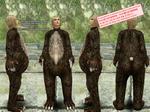 c_Bear_Suit.jpg
