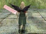b_Black_angel_wing.jpg