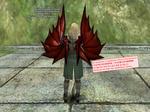 b_Castor_Wing.jpg
