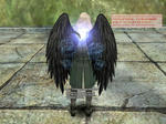 b_Ziz_Wing.jpg