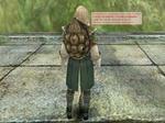 b_Tortoise_armor.jpg