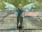 b_Shylph_Wing.jpg