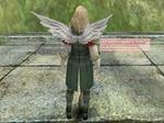 b_White_angel_wing.jpg