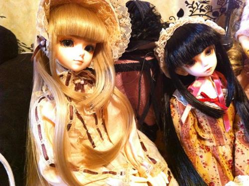 IMG_0455.jpg