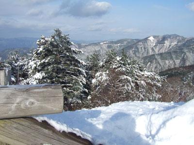 もうちょっとセンスのある山道の写真が撮りたい。