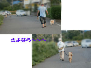 fc4d9fa5.jpeg