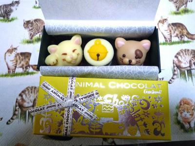 アニマルショコラ猫1