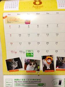 calendar7