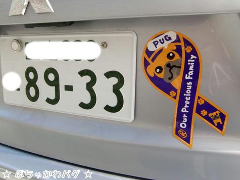 CIMG4513.JPG