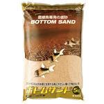 bottomsand5_b.jpg