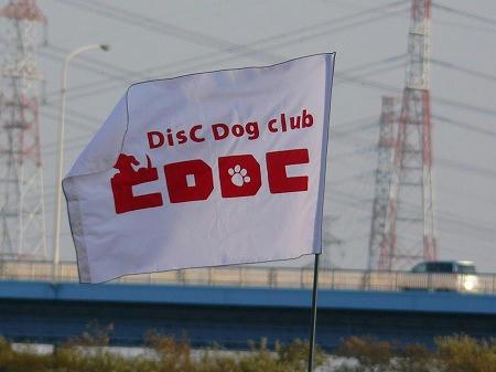 CDDCの旗だよ♪