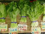 田中さんの野菜