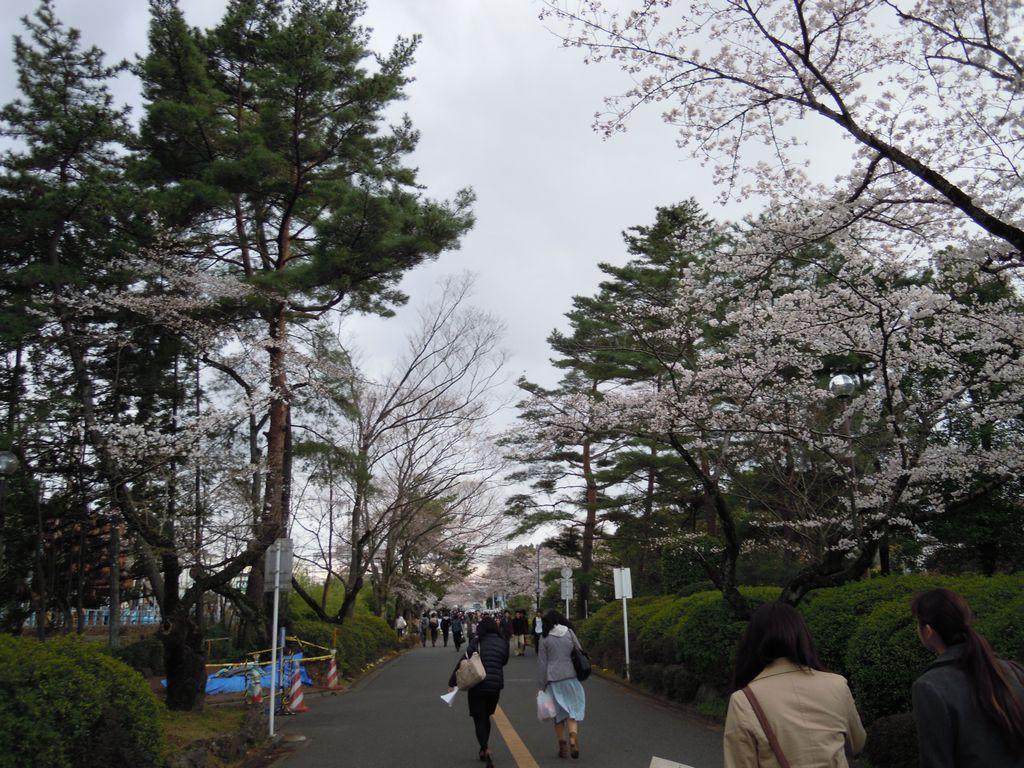 2012_04_06_16-38-46_DSCN5231.JPG