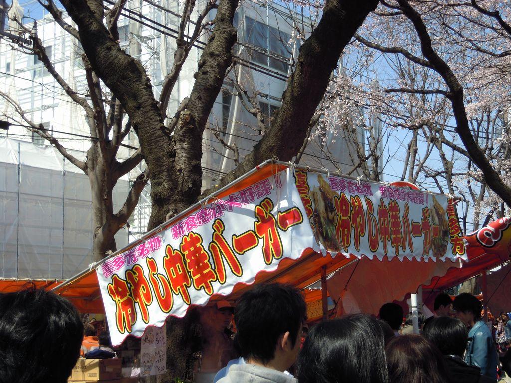 2012_04_08_13-01-32_DSCN5260.JPG