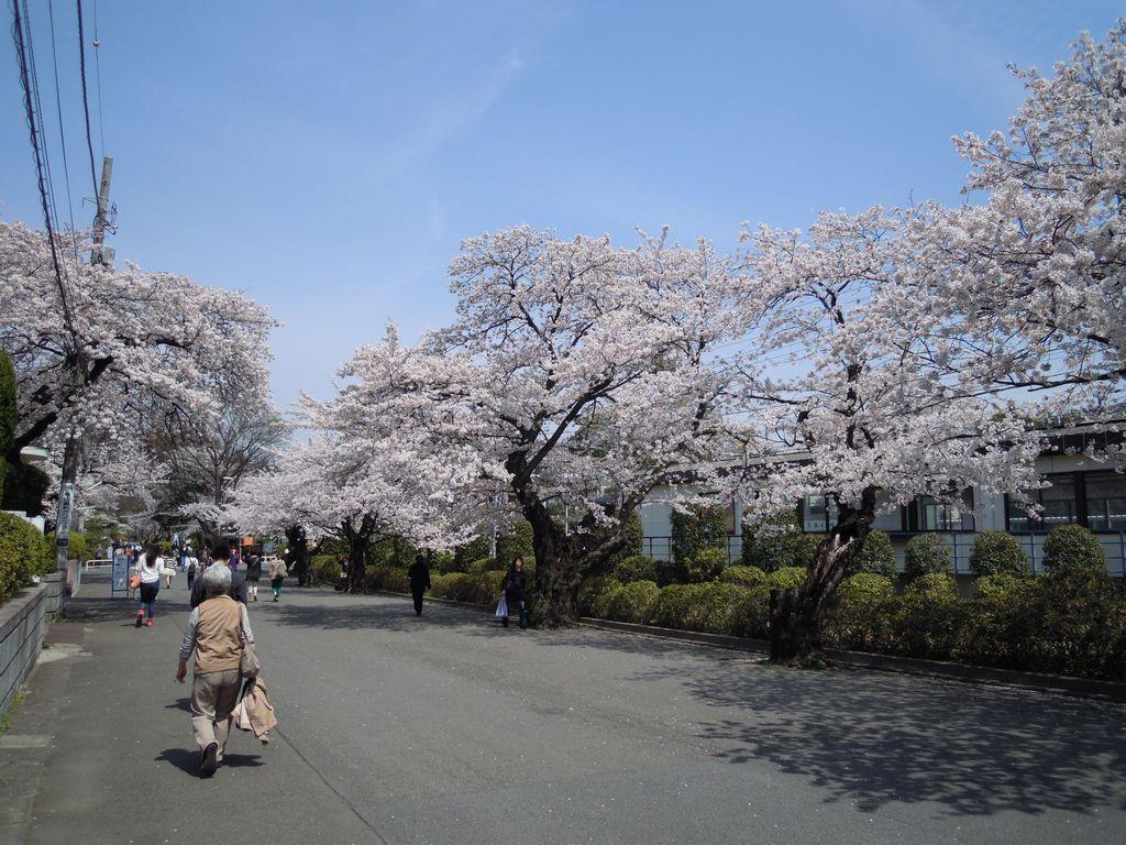 2012_04_10_12-24-10_DSCN5278.JPG