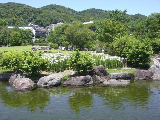 さつき山と百合と池