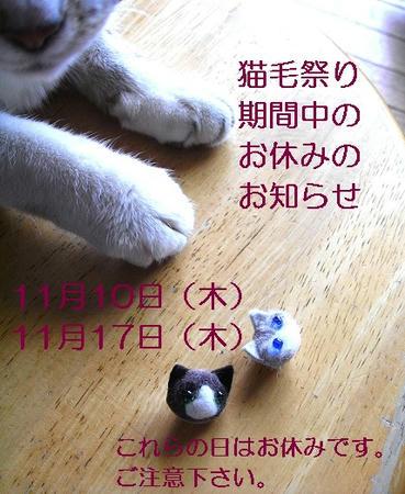 yasumikokuchi.jpg