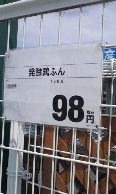 193c4822.jpeg