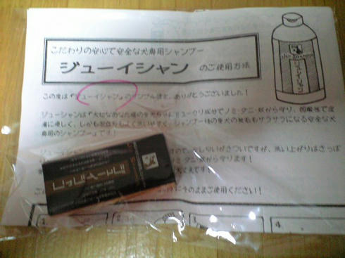 CA390281001.JPG