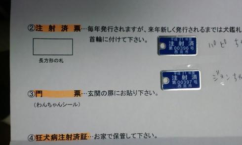 53f012dc.jpeg