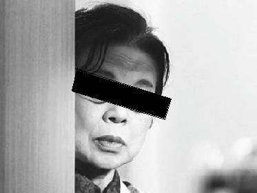 kaseifu-2.jpg