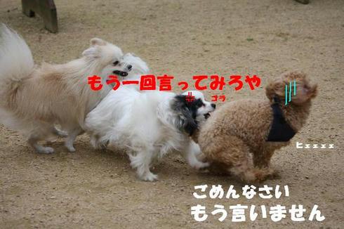 IMG_8069.JPG