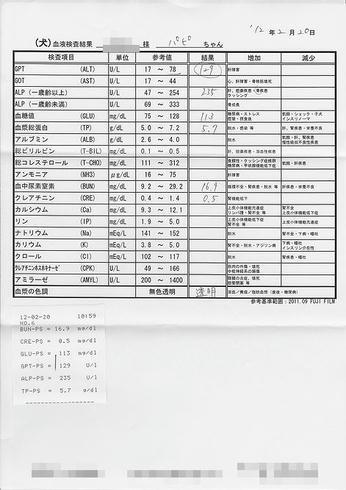 2fb54a3a.jpeg