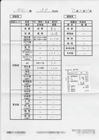 bcf54148.jpeg