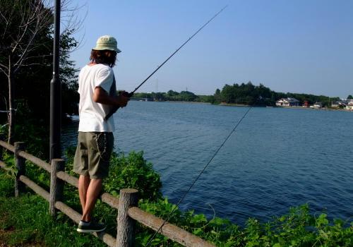 私も釣りをやってみたくなりました。