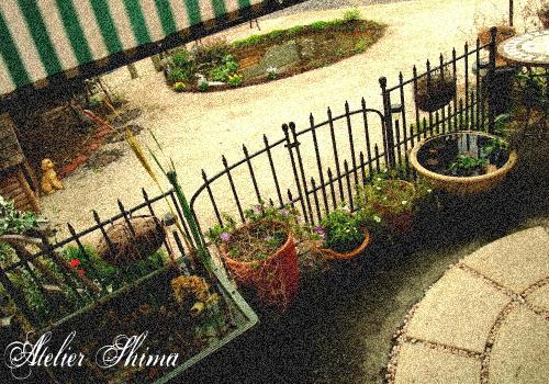 アトリエのお庭もだんだん秋の景色になってきました。Atelier Shima(アトリエシマ)